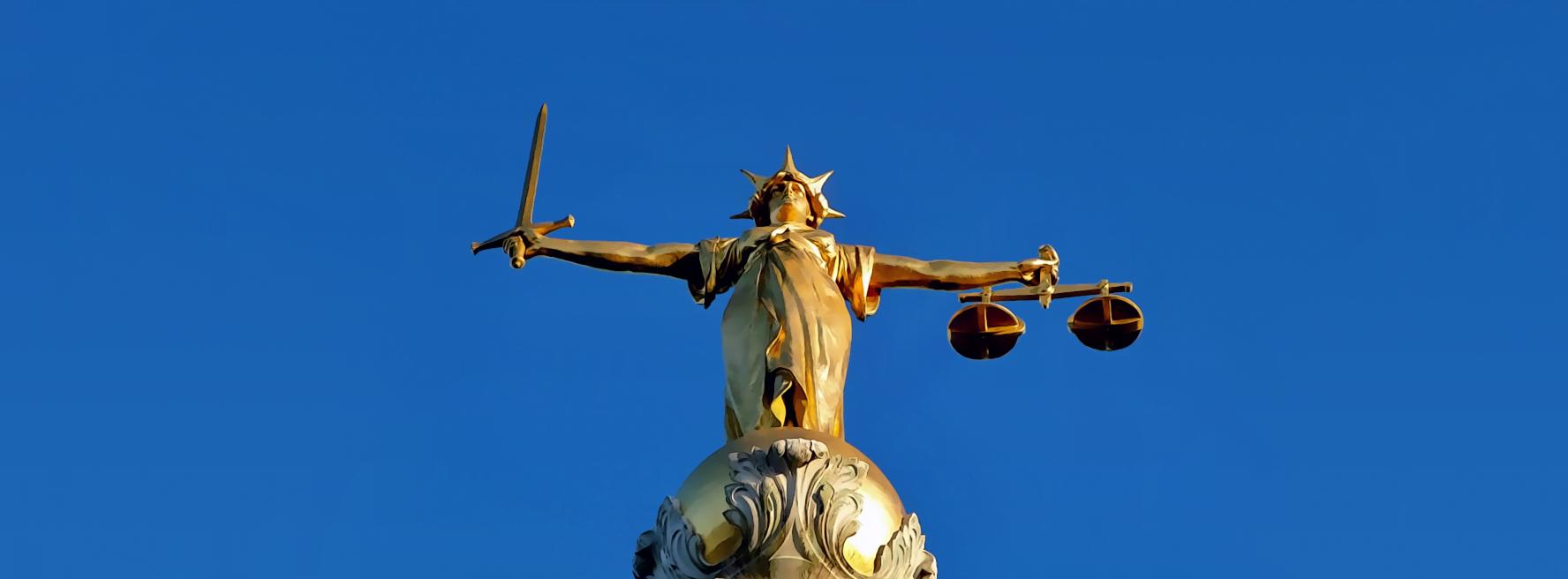 Administrative & Public Law